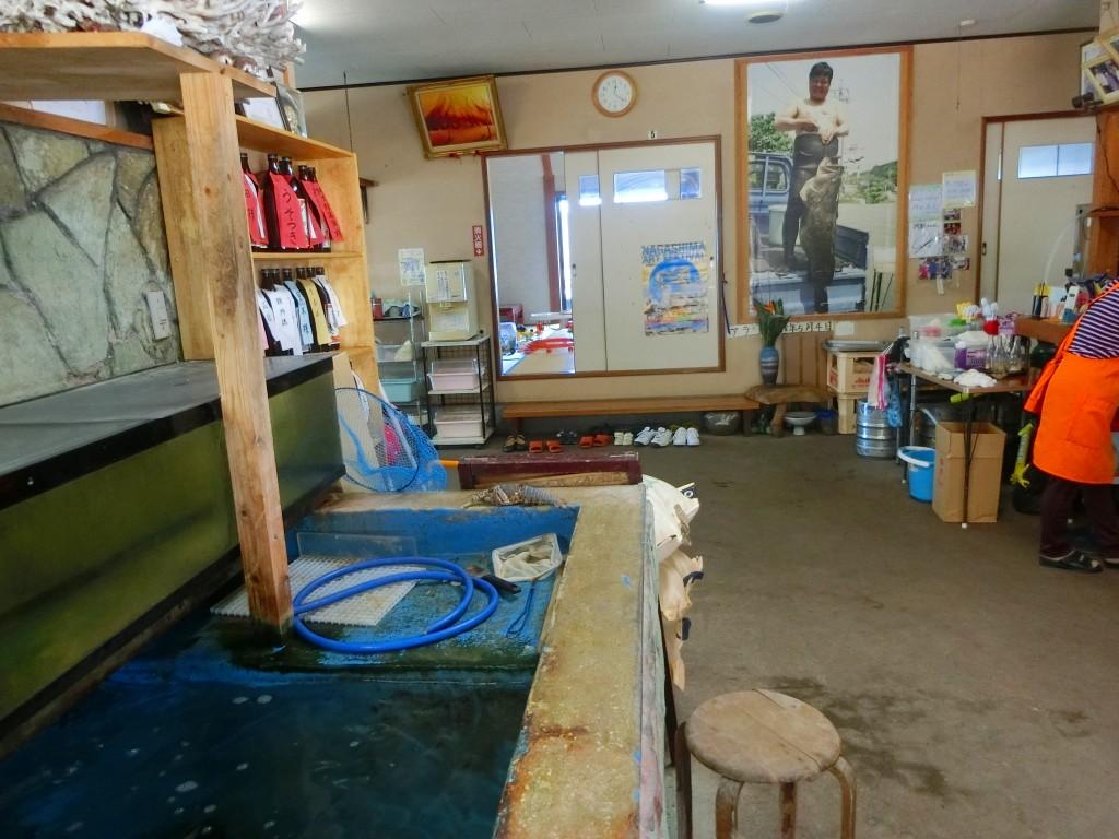 獲った魚は店のイケスに入ります。