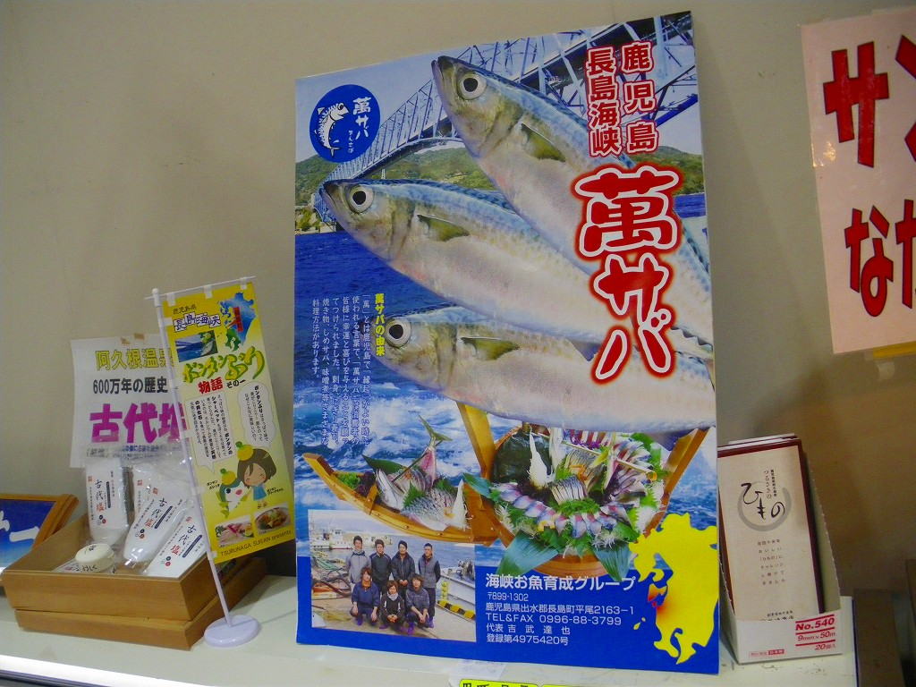 長島海峡のアジやサバは身がしまっています。