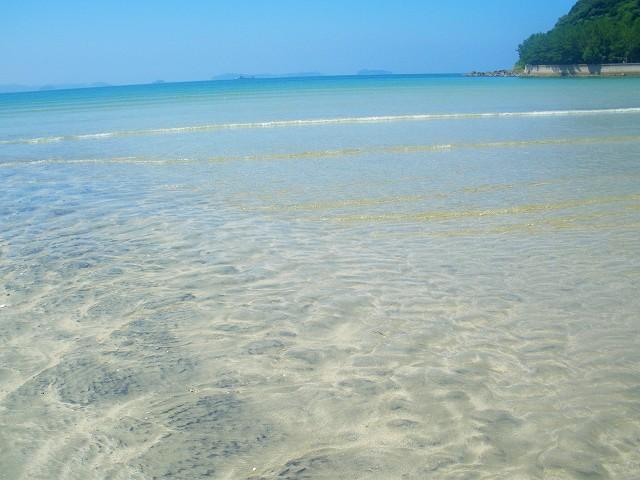 脇本のきれいな海は最高です。