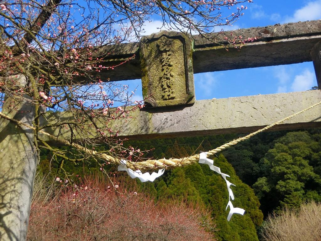 臥竜梅で有名な藤川天神(菅原神社)