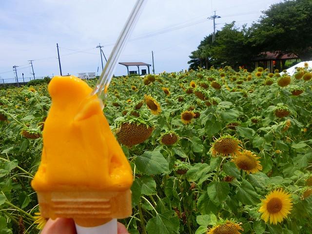JR西大山駅、夏の日の思い出です。