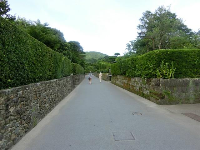 美しい生垣と石垣が続きます。