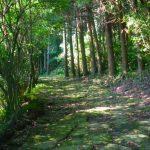龍門司坂の古道を西郷隆盛が率いる薩軍が進みました。