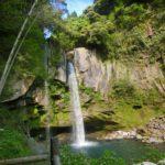 坂本龍馬も眺めたという霧島市の犬飼の滝と藤まつりで癒されませんか。
