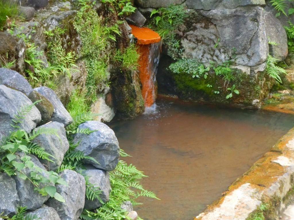 これが坂本龍馬が入った露天風呂です。