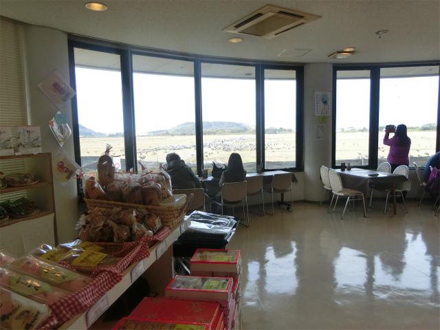 ツル観察センターの1階はカフェと売店です。