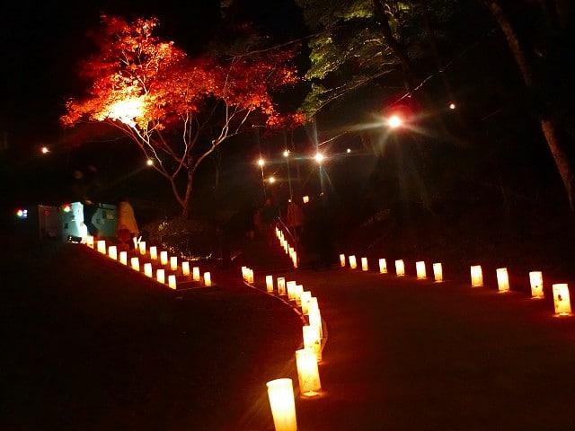 園児たちが作った光の回廊です。