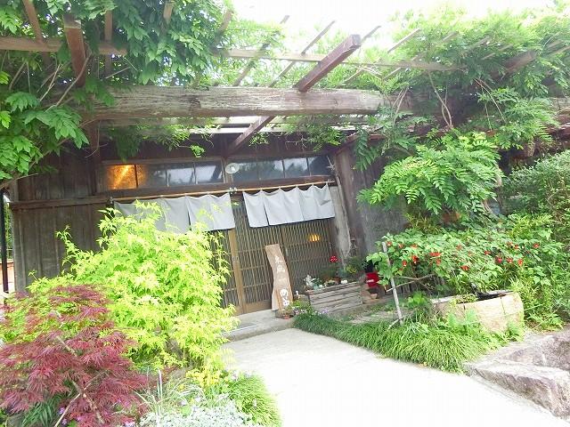 古民家食堂東風の入口は緑がいっぱい