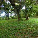 鹿児島県吹上町にある戦国島津氏の居城であり、島津四兄弟が生まれた山城の亀丸城跡(伊作城)を訪ねる。