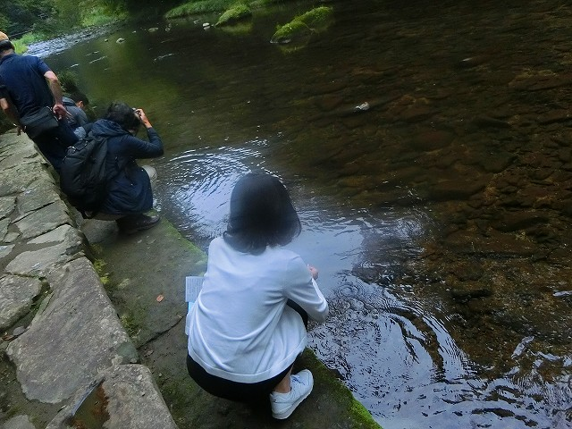 ここが吾平山上陵の手水舎です。
