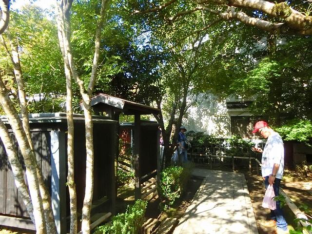 沈壽官窯は緑濃き中に様々な建物が点在します。