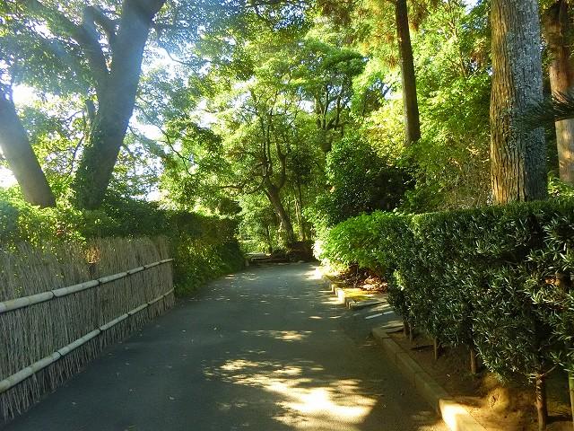 鹿児島市から25分で行ける薩摩焼の里・美山