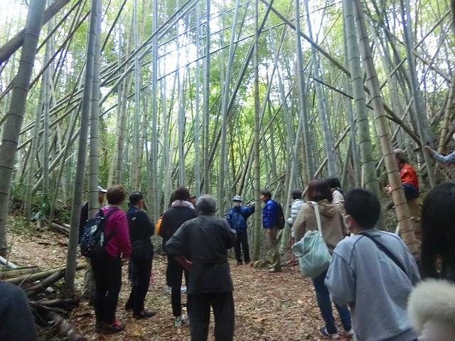 最後は島津家久の居城・串木野城跡。