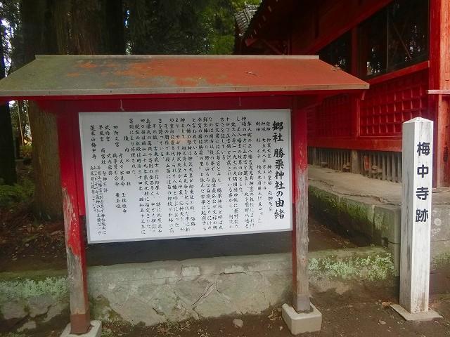 勝栗神社は梅中寺跡でもあります