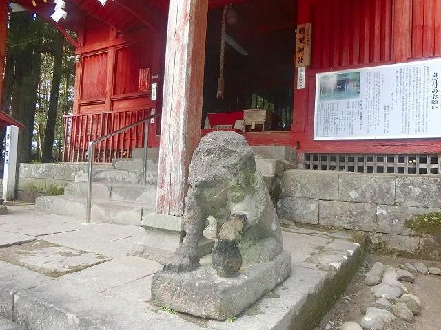 勝栗神社の狛犬(?)
