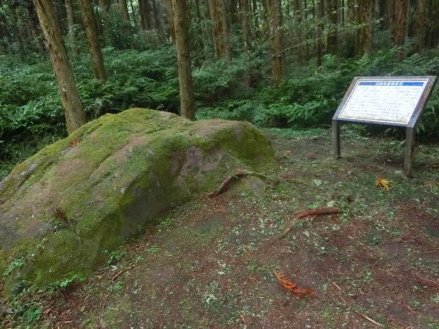 林の中に降りると大きな石がありました。