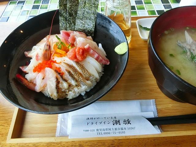 ドライブイン潮騒で海鮮丼を頂きました。