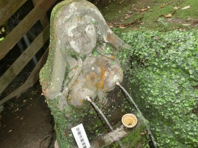 檍神社の安産子育地蔵のおっぱい水です。
