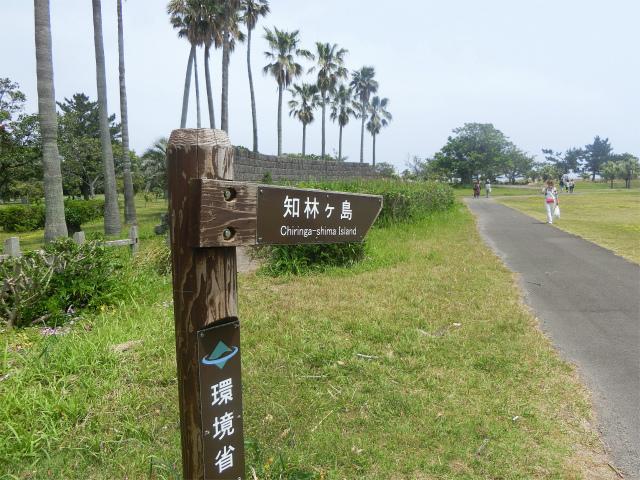指宿エコキャンプ場から知林ヶ島へ