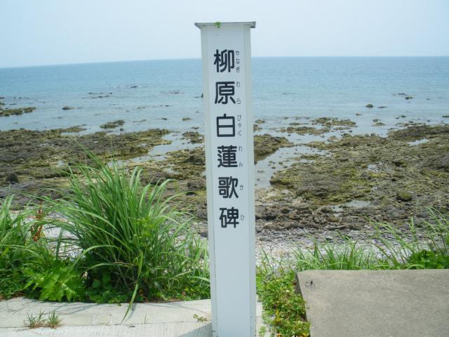 白蓮は右も海、左も海の色蒼くと詠みました。