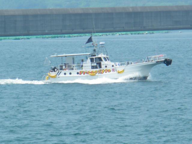 串木野漁港には様々な漁船が行き交います。