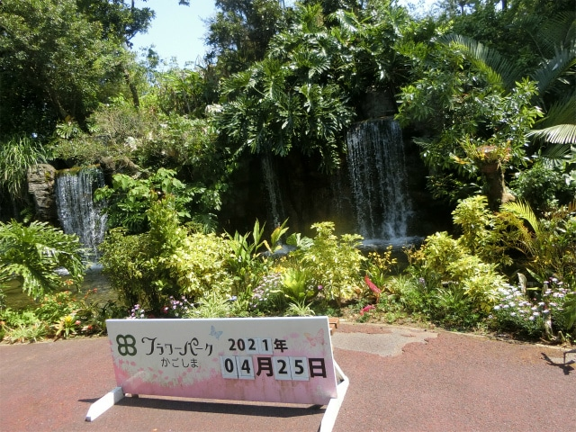 フラワーパークかごしまでは滝がお迎えします。