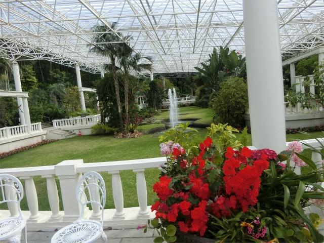 赤い花と白いイスが映える屋内庭園