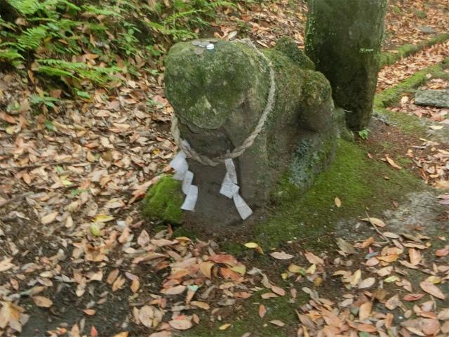 この狛犬は元禄年間以前の古いものです。