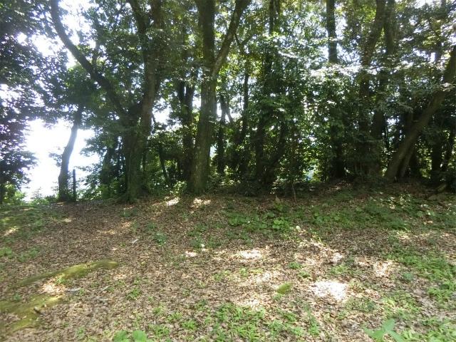 内城本丸の曲輪にある土塁の跡