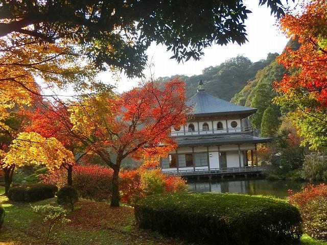 清水岩屋公園のサクラノヤカタです。