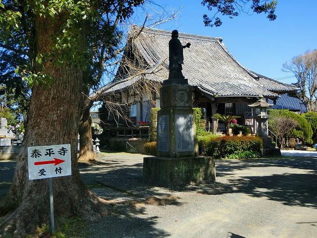 泰平寺公園の横に泰平寺がありました。