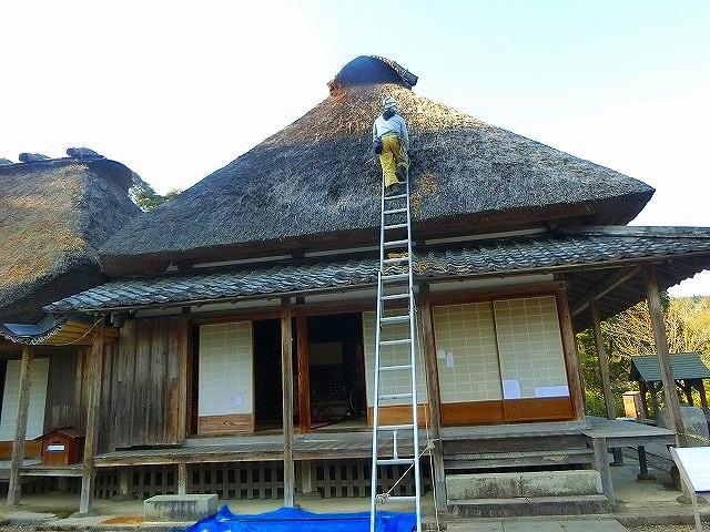 「おもて」のかやぶき屋根は補修中でした。