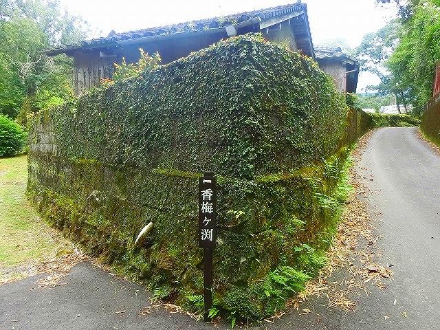 江戸時代に築かれた石垣が残っています。