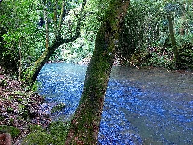 香梅ヶ渕はエメラルドグリーンのパワースポットです。